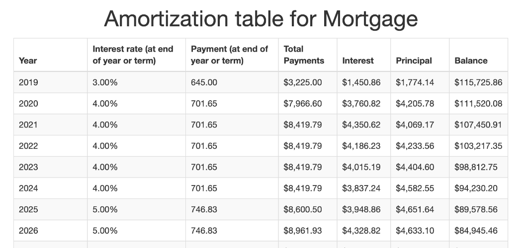Amortization table screenshot